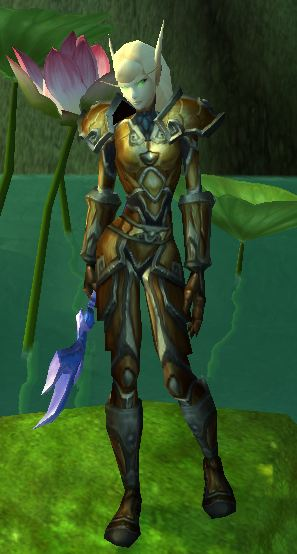 Blood Elf Retribution Paladin