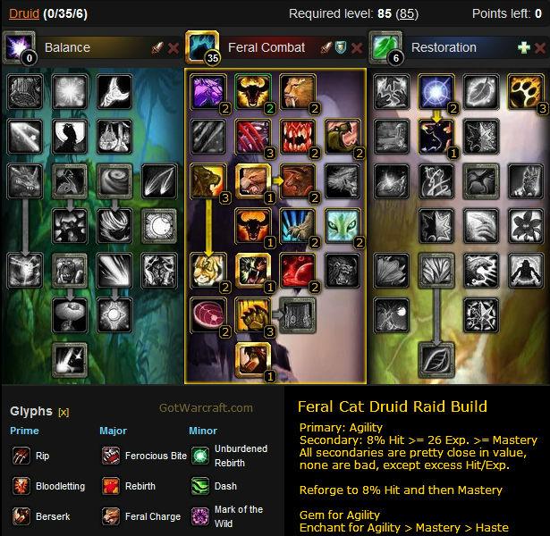 Feral Cat Raid Build