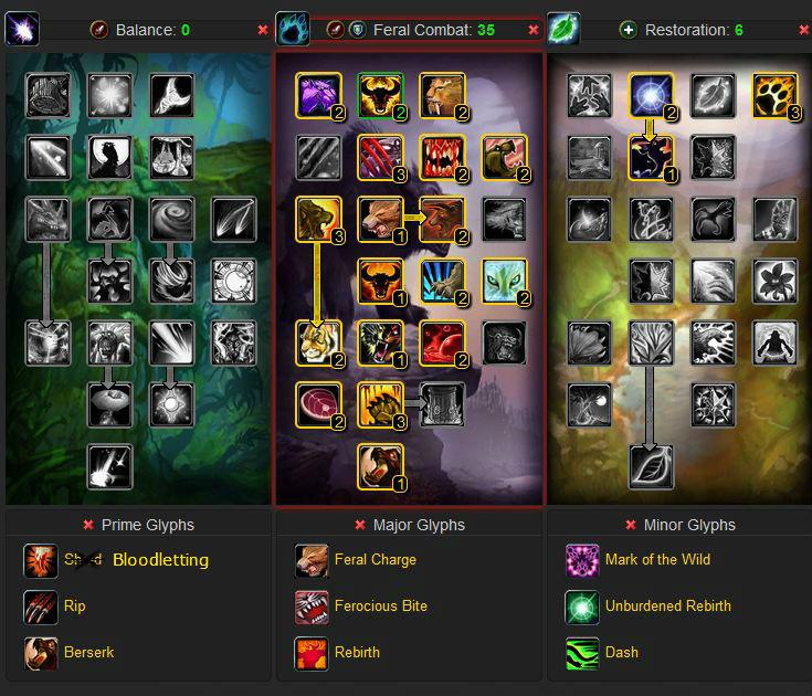Feral Druid DPS Build