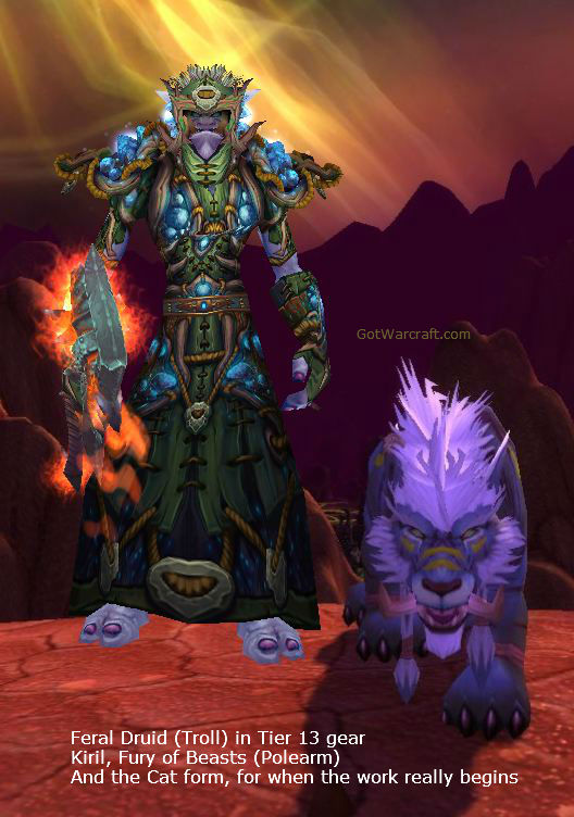 Troll Druid and Feral Cat Form