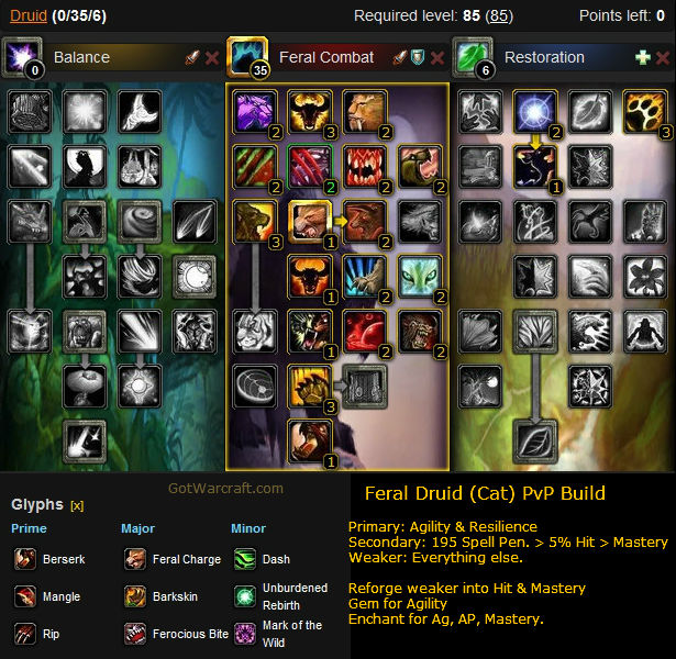 Feral Druid (Cat) PvP Build