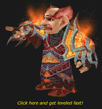 Gnome Warlock is Waiting for You to Level!