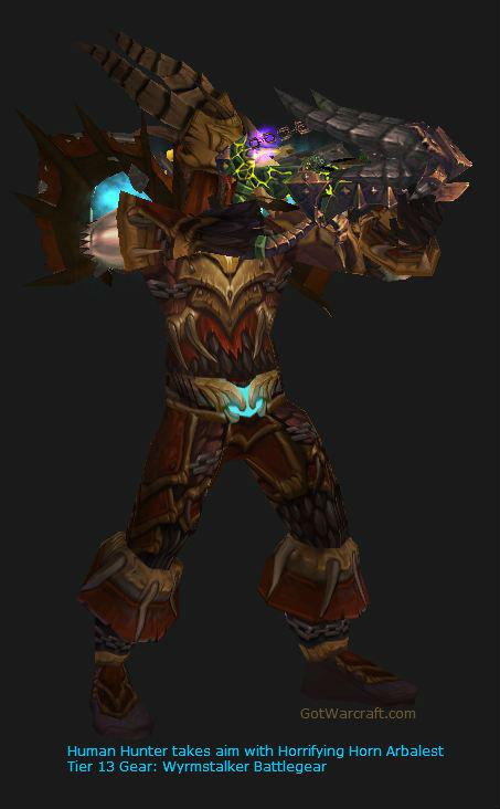 Human Hunter in Tier 13 gear