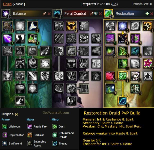 Restoration Druid PvP Build