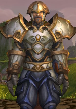 Paladin in Mists of Pandaria Shrine