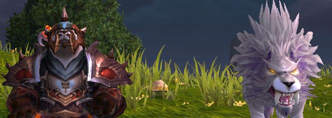Hunter Leveling Talents for the Mists of Pandaria