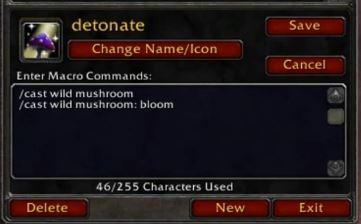 wild mushroom macro